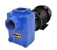 amt pump repair